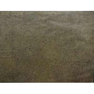 Antonio Dias<br>The Code<br>Acrilica sobre madeira - 1971 - 72,5 x 94,5 - assinado frente inf direito - assinado