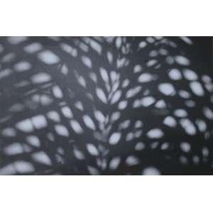 """Ordi Calder, Mônadas, Fotografia Digital impressa s/tela, medindo 100 x 66 cm, Edição 1/1, exclusiva/única, com certificado emitido pelo próprio artista. Ordi Calder é um dos mais importantes fotógrafos contemporâneos da atualidade. Seus trabalhos foram selecionados para39 exposições internacionais, sendo 17 trabalhos premiados, inclusive um """"Accepted Award FIAP, Federação Internacional de Arte Fotográfica. Com obras publicadas em vários livros, dentre eles no Studio Visit Magazine e no ICA – Internacional Contemporary Artists, New York."""